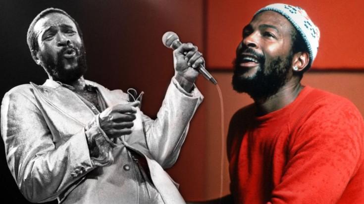 Marvin Gaye serenades us and leaves us wanting more! | Society Of Rock Videos
