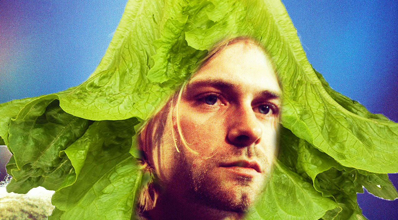 kurt-romain-lettuce