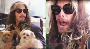 Fan Asks Steven Tyler About Retirement, And He Gives An Answer No One Was Expecting!