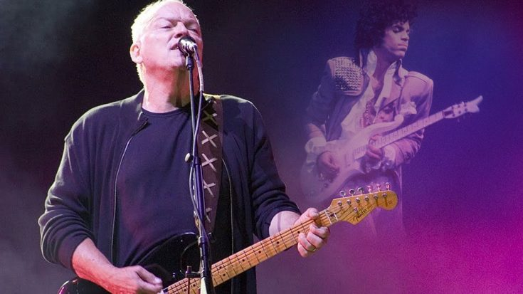 David Gilmour Lets His Guitar Do The Talking In Our All Time Favorite Tribute To Prince | Society Of Rock Videos