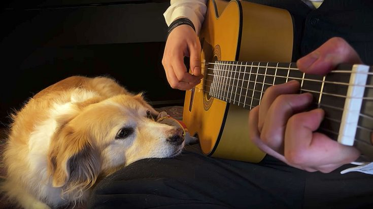 """There's Nothing Cuter Than This Guy Playing """"Space Oddity"""" For His Dog, I Promise You 