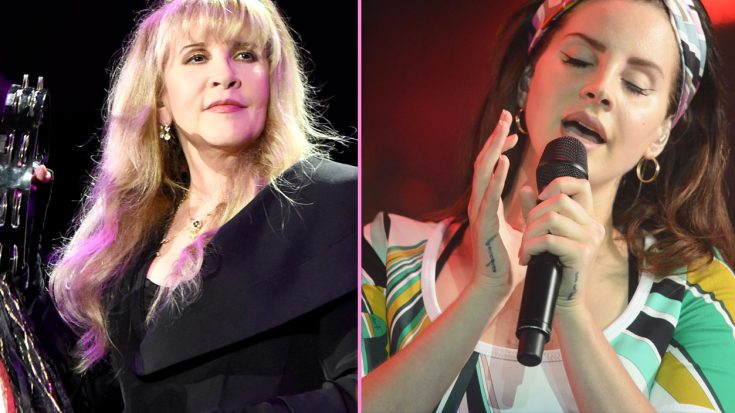 Stevie Nicks Joins Lana Del Rey For Hazy New Duet, And It's Nothing Short Of Pure Magic | Society Of Rock Videos