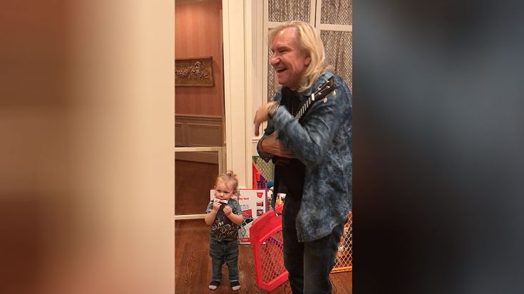 Joe Walsh Starts Jamming With A Toddler – People Immediately Start Filming | Society Of Rock Videos