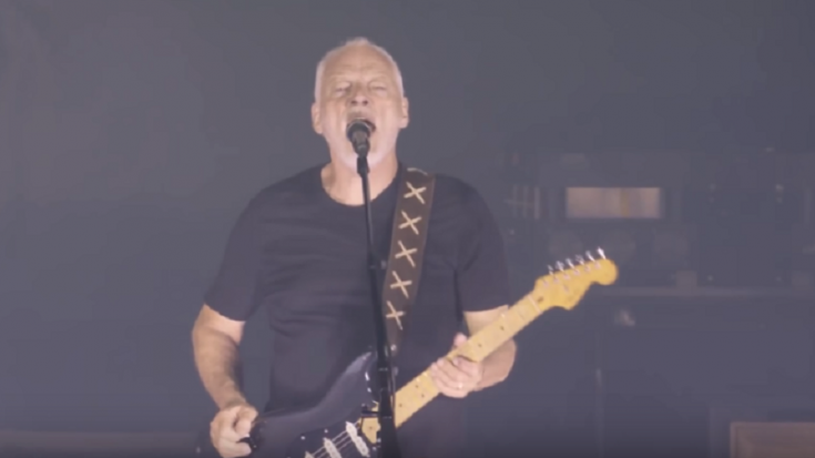 David Gilmour's Guitar Wisdom – Get Inside His Experience | Society Of Rock Videos