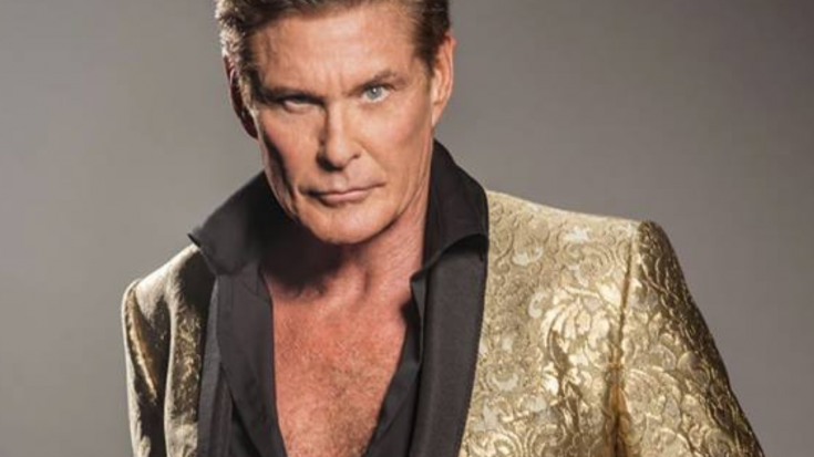 David Hasselhoff Going Heavy Metal For New Album – No Really, We're Not Making This Up   Society Of Rock Videos