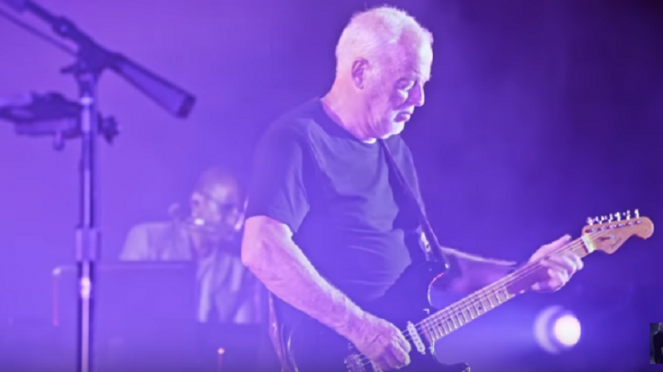 Buyer Of David Gilmour's Guitar Revealed | Society Of Rock Videos