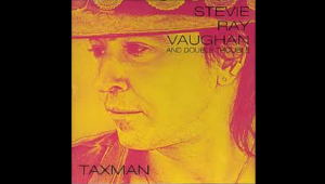 Facts About Stevie Ray Vaughan