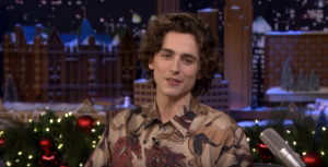Actor Timothée Chalamet Casted As Bob Dylan