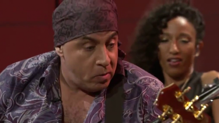 The Truth Why Steven Van Zandt Quit The E Street Band   Society Of Rock Videos